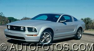 Click image for larger version  Name:2005%20ford%20mustang%20gt%20beauty%20right.jpg Views:219 Size:38.9 KB ID:10210