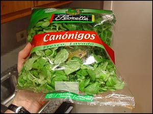 Click image for larger version  Name:lettuce small.jpg Views:272 Size:49.3 KB ID:10285
