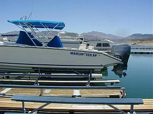 Click image for larger version  Name:marlin.jpg Views:256 Size:56.5 KB ID:11387
