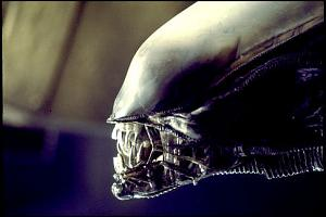 Click image for larger version  Name:Alien1.jpg Views:207 Size:30.0 KB ID:22588