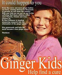 Click image for larger version  Name:ginger.jpg Views:236 Size:42.9 KB ID:5284