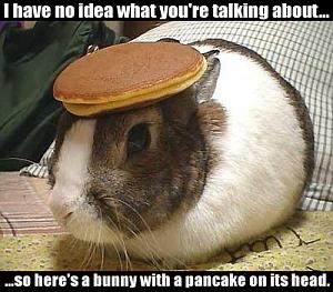 Click image for larger version  Name:bunny.jpg Views:359 Size:47.5 KB ID:7210