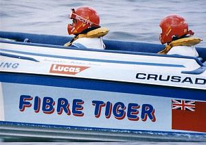 Click image for larger version  Name:fibre tiger small.jpg Views:577 Size:77.9 KB ID:9136